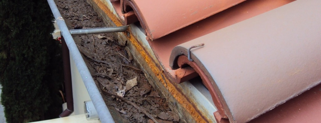 How Often Should Homeowners Clean Their Gutters?